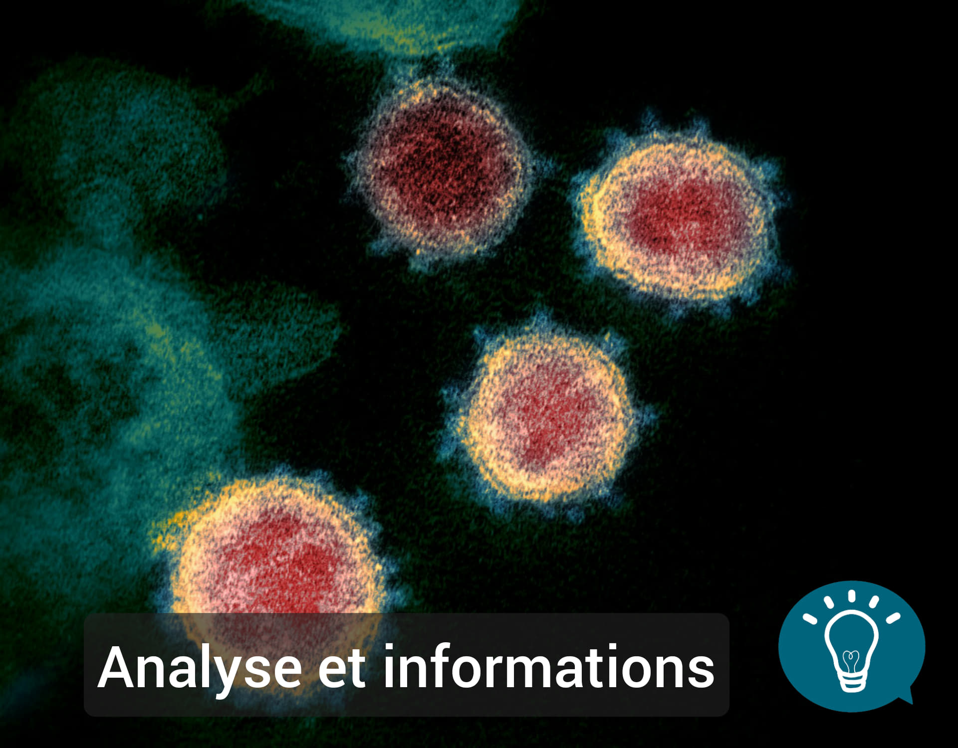 Covid- 19 : Analyse et Ressources