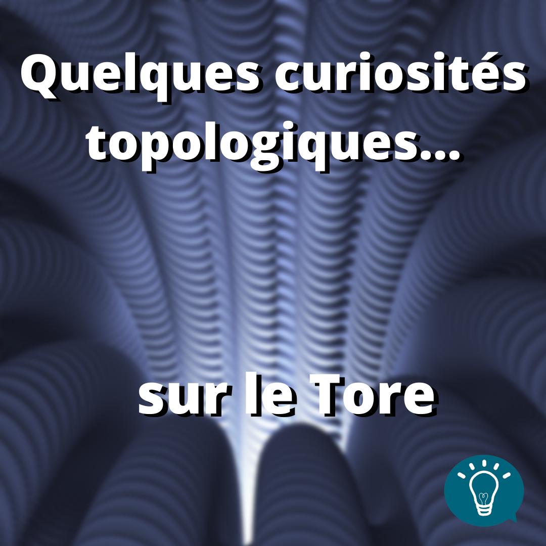 Quelques curiosités topologiques… sur le tore